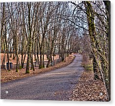 Off Rattle Snake Road Acrylic Print