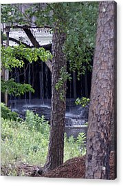 Acrylic Print featuring the photograph Off The Beaten Path by John Glass