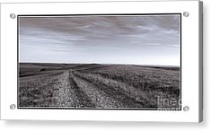 Acrylic Print featuring the photograph Off The Beaten Path by Thomas Bomstad