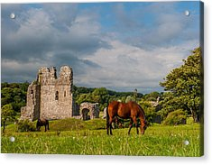 Ogmore Castle Acrylic Print by David Ross