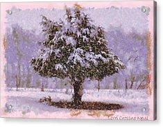 Oh Christmas Tree Acrylic Print by Lorri Crossno