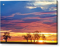 Oh What A Beautiful Morning Acrylic Print by James BO  Insogna