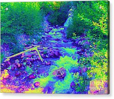 Acrylic Print featuring the photograph Ohanapecosh River by Ann Johndro-Collins