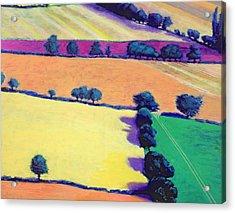 Oil Acrylic Print by Paul Powis