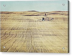 Oil And Gas Activity Among Acrylic Print by Roberta Murray