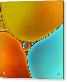 Oil And Water 13 Acrylic Print by Rebecca Cozart