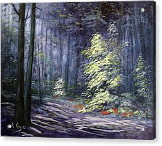 Oil Painting - Forest Light Acrylic Print by Roena King