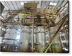 Oil Palm Processing Factory Acrylic Print by Scubazoo/science Photo Library