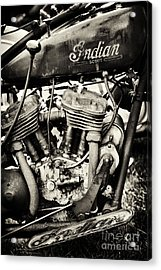 Oily Old Indian Acrylic Print by Tim Gainey