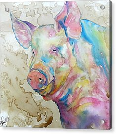 Acrylic Print featuring the painting Oink by Christy  Freeman
