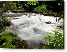 Oirase Stream Acrylic Print