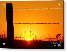Okeechobee Farm Sunset Acrylic Print