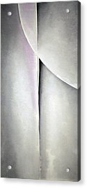 O'keeffe's Line And Curve Acrylic Print by Cora Wandel