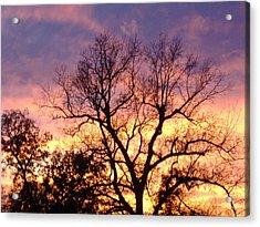 Oklahoma Sunset Acrylic Print