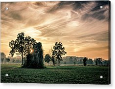 Old Abandoned House Covered By Vegetation At Sunset Acrylic Print