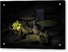 Old And Rusted Still Life Acrylic Print