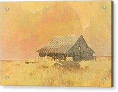 Old Barn On The Prairie Acrylic Print by Ann Powell