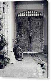 Old Bicycle Acrylic Print by Jelena Jovanovic