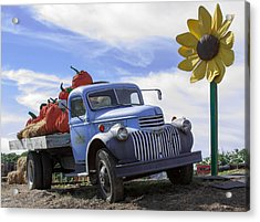 Acrylic Print featuring the photograph Old Blue Farm Truck  by Patrice Zinck