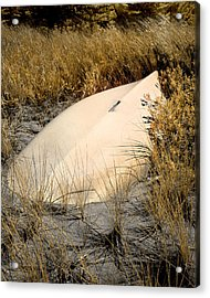 Old Boat In Dune Grass Acrylic Print