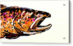 Old Brown Trout Acrylic Print