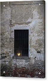 Old But Full Of Life Acrylic Print by Alfio Finocchiaro