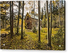 Old Cabin In Iron Town Colorado Acrylic Print by James Steele