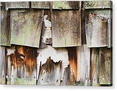 Old Cedar Shingles 1735 Acrylic Print by Bob Hills