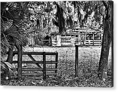 Old Chisolm Island Barn Acrylic Print