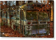 Old City Bus Acrylic Print by Paul Herrmann