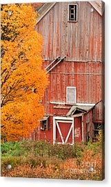 Old Dilapidated Country Barn During Autumn. Acrylic Print