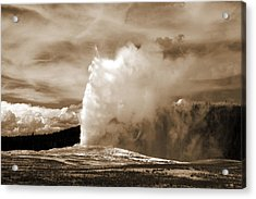 Old Faithful In Yellowstone Acrylic Print