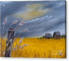 Old Farm 1 Acrylic Print by Beverly Livingstone