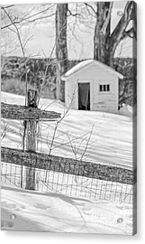 Long Cold Winter Acrylic Print