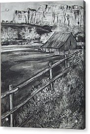 Old Farm House Acrylic Print by Laneea Tolley