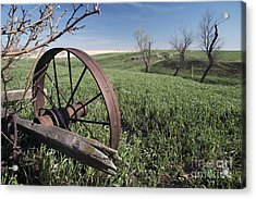 Old Farm Wagon Acrylic Print