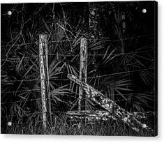 Old Fence Acrylic Print