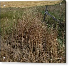 Old Fence Line Acrylic Print by Donald S Hall