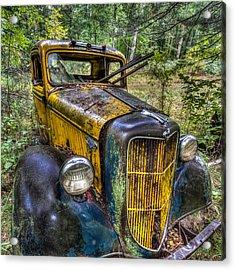 Old Ford Acrylic Print by Paul Freidlund