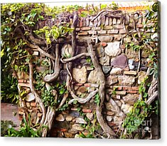 Old Garden Wall Acrylic Print by Lutz Baar