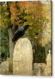 Old Graveyard And Crow Acrylic Print by Gothicrow Images