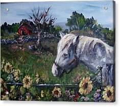 Acrylic Print featuring the painting Old Grey Mare by Megan Walsh