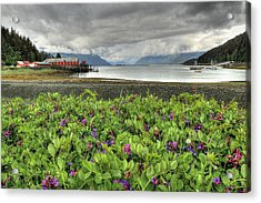 Old Haines Cannery Acrylic Print