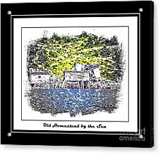 Old Homestead By The Sea Acrylic Print by Barbara Griffin
