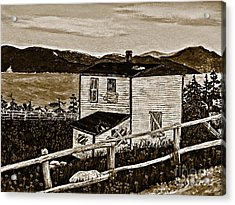 Old House In Sepia Acrylic Print by Barbara Griffin
