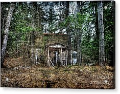 Old House With Overgrown Brush Acrylic Print by Dan Friend