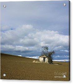 Old Hut. Auvergne. France Acrylic Print