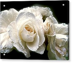 Old Lace Rose Bouquet Acrylic Print by Jennie Marie Schell