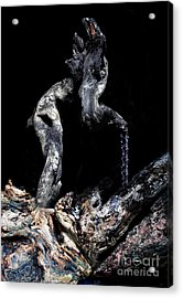 Old Man Walking Acrylic Print by Petros Yiannakas