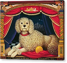Old Mother Hubbards Wonderful Dog Acrylic Print by Frances Broomfield